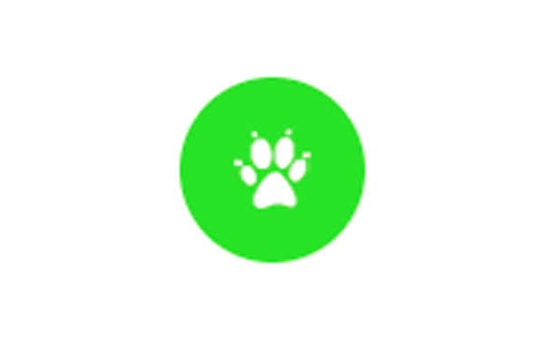 Eine Pfote eines Hundes