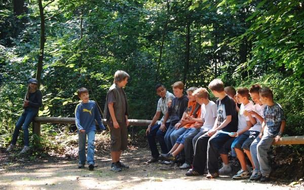 Schulklasse sitzt in der Natur auf Baumstämmen