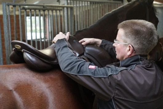 osteopath aus berlin beim satteln eines pferds, dipo, karsten gemmeker