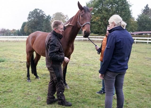 Gemmeker berichtet den Haltern über die Beschwerden des Pferds